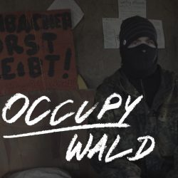 033_Y_Thumbnail_hell_occupy_wald