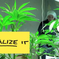 season02_legalize_it